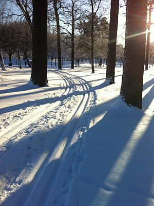 Snow grooming - Classic tracks at Drottningholm Palace in Sweden.