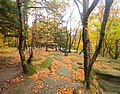 Cuyahoga Valley National Park (14968185294).jpg