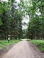 Dūkštų sen., Lithuania - panoramio (140).jpg