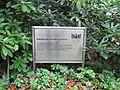 DU-Waldfriedhof-Lehmbruck 01.jpg