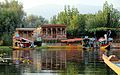 Dal Lake's sunset tour on a shikara - Srinagar (9967062476).jpg