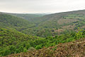 Dart valley west of Bench Tor.jpg