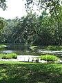 Daufuskie Island - herons creek.jpg