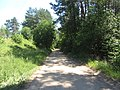 Daugų sen., Lithuania - panoramio (73).jpg