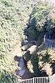 Davis Fall, Nepal-WLV-1778.jpg