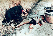 Dead man and child from the My Lai massacre