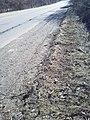 Debris in bike lane.jpg