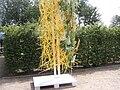 Dekoration Florales Objekt - panoramio - Arnold Schott (9).jpg