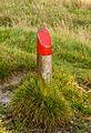 Delleboersterheide – Catspoele Natuurgebied van It Fryske Gea. Wandeling over de Delleboersterheide 02.jpg