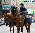 Denver Police Equine Unit.jpg