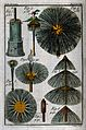 Depictions of the brushes of a chimney sweep. Coloured engra Wellcome V0039426.jpg