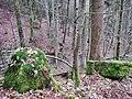 Der Baiersbach auf dem Weg zur Nagold - panoramio.jpg