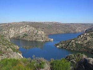 Desembocadura del río Esla en el Duero.jpg
