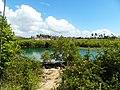 Diani Beach 2013 - panoramio (40).jpg