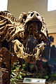Dinosaurs in Their Time, Carnegie Museum of Natural History, 2013-12-14 02.jpg