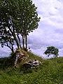 Disert Graveyard - geograph.org.uk - 844969.jpg