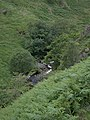 Doethie gorge - geograph.org.uk - 913371.jpg