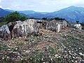 Dolmens @ Marayoor - panoramio (1).jpg