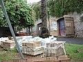 Domus Aurea Excavations (7257584330).jpg