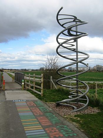 English: Close up of The Double Helix