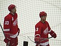 Drew Miller and Nick Jensen, Detroit Red Wings vs. Pittsburgh Penguins, Joe Louis Arena, Detroit, Michigan (21713088791).jpg