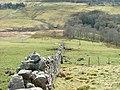 Drystone Wall in Glen Uig - geograph.org.uk - 763091.jpg