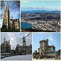 Dunedin Collage.jpg