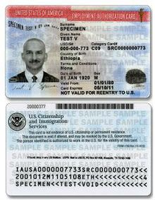 Employment Authorization Document Wikipedia