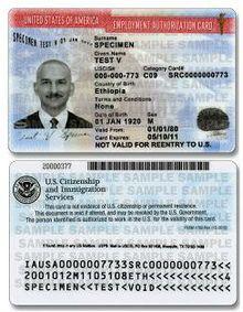 Employment Authorization Document Wikipedia