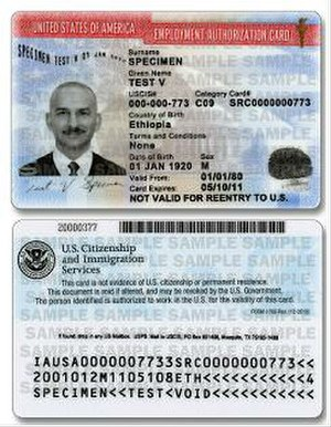 Employment authorization document - Example EAD card (2011 version)