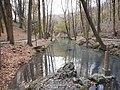 Ebro river source, Cantabria Spain, 13 November 2015 (10).JPG