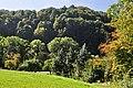Eglisau - Rhinsberg, spätbronzezeitliche Höhensiedlung - neuzeitliche Hochwacht 2011-09-21 14-25-14.jpg