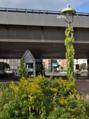 Eisackstr innsbruckerplatz straßenlaterne 2021-09-05.png