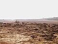 El Mallaha beach11.JPG
