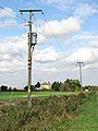 Electricity poles beside the A1101 (Mildenhall Road) - geograph.org.uk - 1516883.jpg