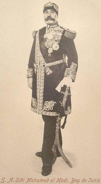 Muhammad IV al-Hadi - Muhammad IV al-Hadi