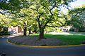 Eliot Circle, Reed College.jpg