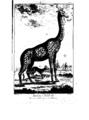 Encyclopedie volume 5-029.png
