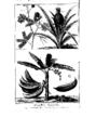 Encyclopedie volume 5-154.png