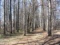 Engels, Saratov Oblast, Russia - panoramio (21).jpg