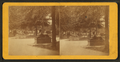 Entrance to Park, from Robert N. Dennis collection of stereoscopic views.png