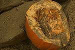 Exploding pumpkins 131106-F-YU668-185.jpg