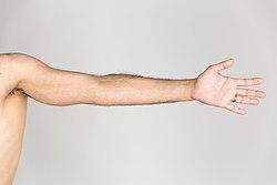 Extended arm.jpg