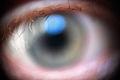 Eye (2498768430).jpg