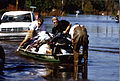 FEMA - 120 - Photograph by Dave Saville taken on 09-16-1999 in South Carolina.jpg