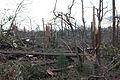 FEMA - 28727 - Photograph by Mark Wolfe taken on 03-03-2007 in Alabama.jpg
