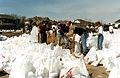FEMA - 28766 - Photograph by Dave Saville taken on 04-10-1997 in North Dakota.jpg