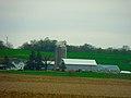 Family Dairy Farm - panoramio.jpg