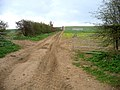 Farm track from Grange Road, Ickleton, Cambs - geograph.org.uk - 153262.jpg