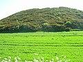 Farmland, Cans Dale - geograph.org.uk - 1330217.jpg